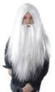 Picture of Wizard Wig - BW660