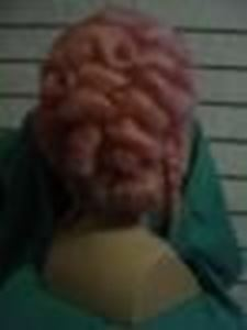 Picture of Lady's 18th Century Wig - Back View - DSC 00138