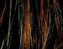 Hazelnut/Mix