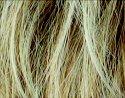 Sandy Blonde/Mix